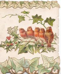 no front title, perforated marginal design of stylised holly round inset of  5 English robins perched on branch