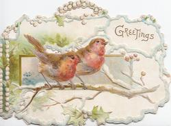 GREETINGS in gilt top right, pale blue perforated marginal design round inset of  2 English  robins perched on snowy branch