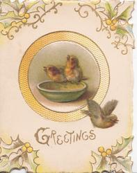 GREETINGS in gilt, perforated corner design of stylised holly round circular inset of 2 English robins perched on bowl, another flying away