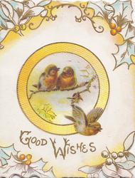 GOOD WISHES in gilt, stylised holly round inset of  3 English robins 2 perched on snowy branch & one flies