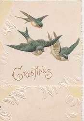 GREETINGS in gilt, 3 bluebirds of happiness fly down & right, marginal embossed design of stylised leaves