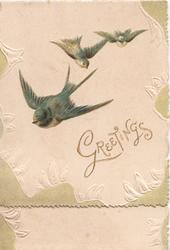 GREETINGS in gilt, 3 bluebirds of happiness fly down & left, marginal embossed design of stylised leaves