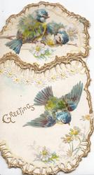 GREETINGS in gilt, 2 blue-tits perch on top flap, one flies below, perforated gilt marginal design of stylised daisies