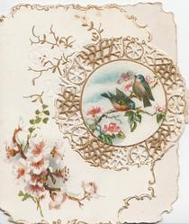 no front title, perforated gilt & white circular design round inset of 2 perched chaffinches, pink blossom lower left