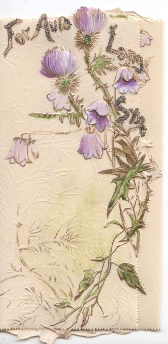FOR AULD SYNE in glittered gilt above campanulas & purple thistles