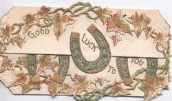 GOOD LUCK TO YOU in gilt among glittered horseshoes & stylised ivy leaves