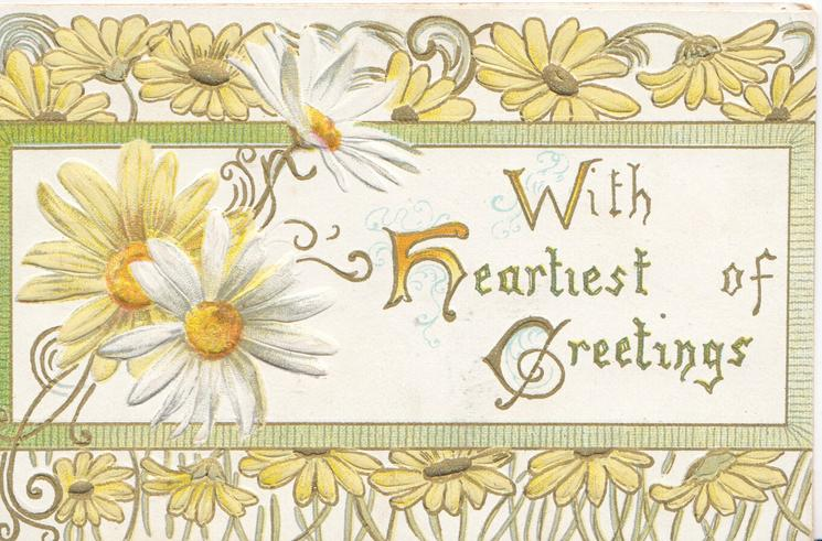WITH HEARTIEST OF GREETINGS(W, H & G illuminated) on white inset, yellow & white daisies