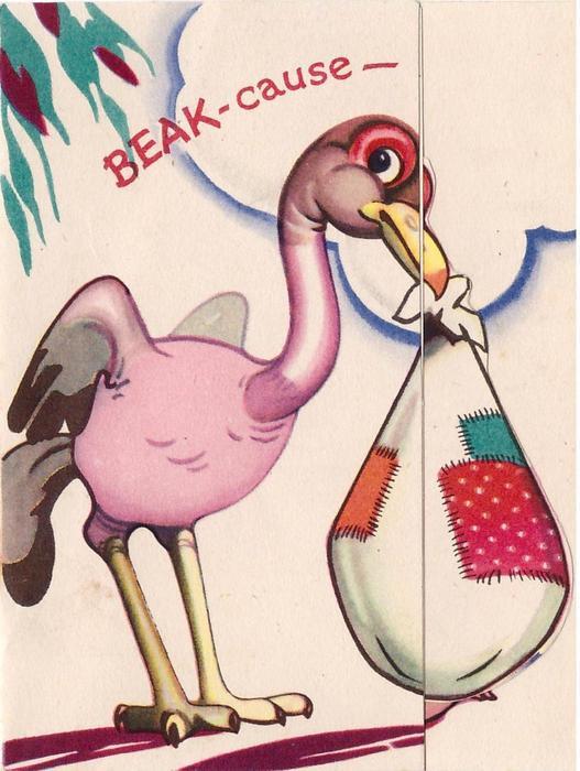 BEAK-CAUSE pink stork carries sac in beak