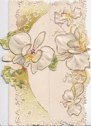 no front title, stylised white anemones & ginkgo leaves, embossed green & white marginal designs