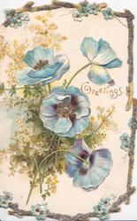 GREETINGS in gilt, blue anemones in front of foliage, embossed, marginal glittered forget-me-not design
