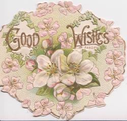 GOOD WISHES in gilt across perforations, pink & white wild roses, embossed