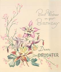 BEST WISHES ON YOUR BIRTHDAY DEAR DAUGHTER 4 pink & white columbine, silver leaves & pink floral sprays