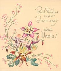 BEST WISHES ON YOUR BIRTHDAY DEAR UNCLE 4 pink & white columbine, silver leaves & pink floral sprays
