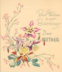 BEST WISHES ON YOUR BIRTHDAY DEAR MOTHER 4 pink & white columbine, silver leaves & pink floral sprays