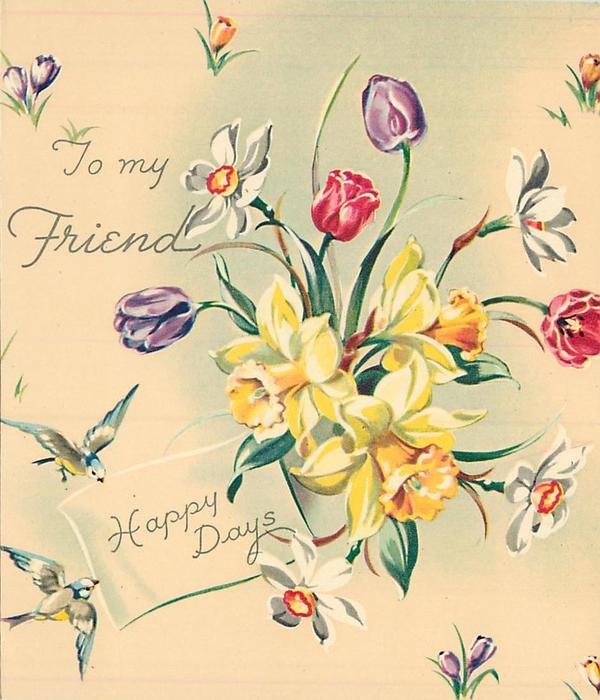 HAPPY DAYS below TO MY FRIEND central bunch of daffodils & tulips, croci, bluebirds of happiness