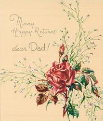 MANY HAPPY RETURNS above DEAR DAD! red rose & buds with white floral sprays, lower right