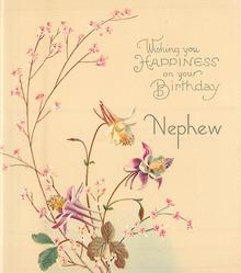 WISHING YOU HAPPINESS ON YOUR BIRTHDAY NEPHEW 3 columbine & pink floral sprays