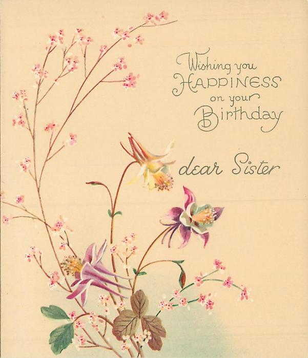 WISHING YOU HAPPINESS ON YOUR BIRTHDAY DEAR SISTER 3 columbine & pink floral sprays