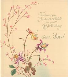 WISHING YOU HAPPINESS ON YOUR BIRTHDAY DEAR SON! 3 columbine & pink floral sprays