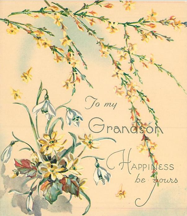 HAPPINESS BE YOURS sprays of yellow jasmine above  TO MY GRANDSON snowdrops & yellow asters left