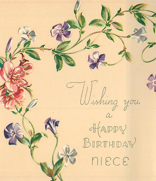 WISHING YOU A HAPPY BIRTHDAY NIECE trailing purple & white flowered vine, several pink blossoms