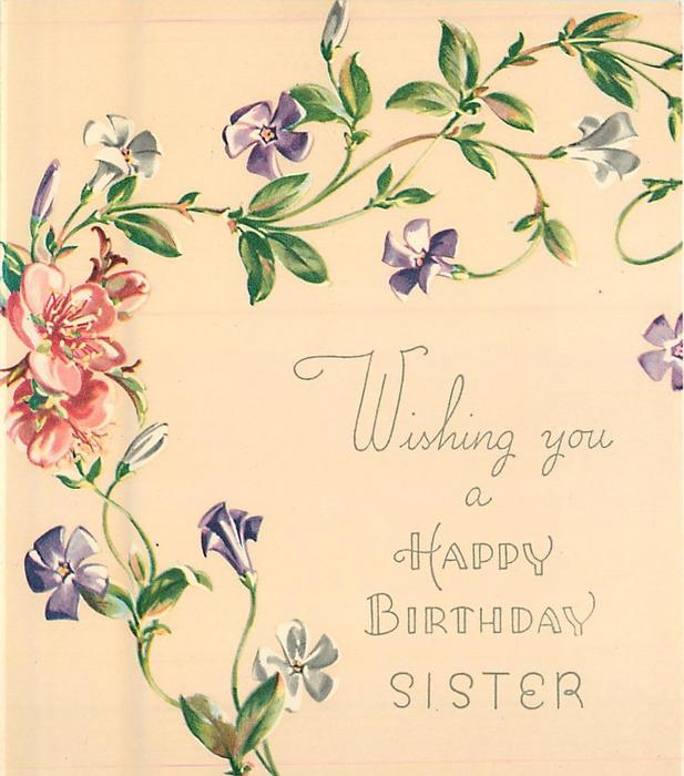 WISHING YOU A HAPPY BIRTHDAY SISTER trailing purple & white flowered vine, several pink blossoms centre left