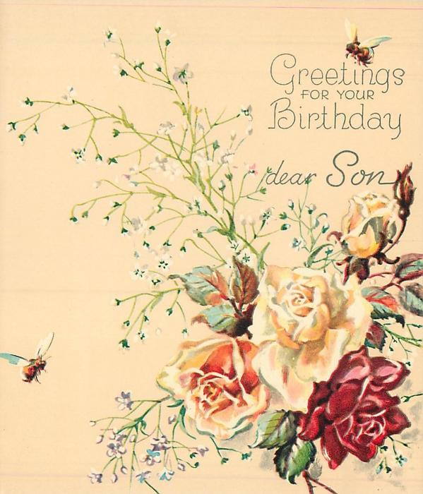 GREETINGS FOR YOUR BIRTHDAY DEAR SON above 4 roses --  3 yellow & 1 red, white floral sprays, 2 bees