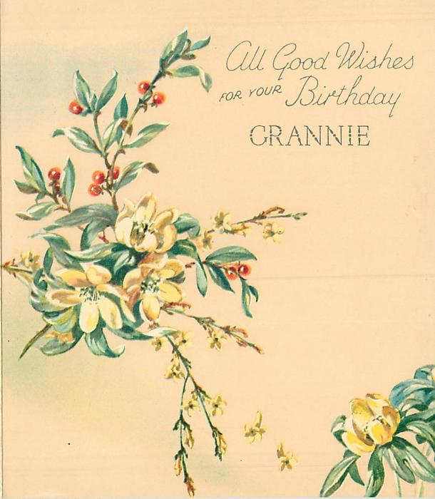 ALL GOOD WISHES FOR YOUR BIRTHDAY GRANNIE right of buttercups, yellow jasmine & plant with red berries