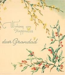 WISHING YOU HAPPINESS DEAR GRANDAD  inbetween cascading yellow jasmine & greenery with red berries