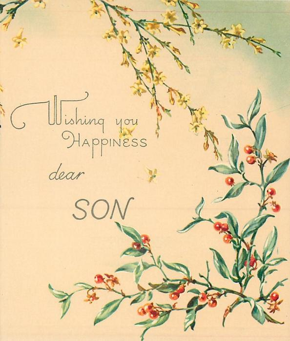 WISHING YOU HAPPINESS DEAR SON inbetween cascading yellow jasmine & greenery with red berries