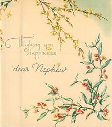 WISHING YOU HAPPINESS DEAR NEPHEW inbetween cascading yellow jasmine & greenery with red berries