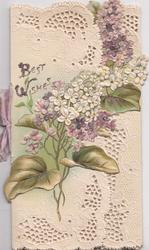 BEST WISHES above purple & white lilac, complex perforated design