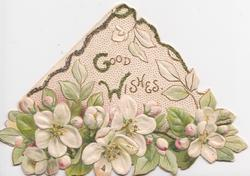 GOOD WISHES in gilt on white background over apple blossom, triangular card