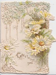 GREETINGS in gilt, white daisies with yellow centres amongst stylised white floral design