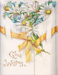 GOOD WISHES in gilt, white daisies with yellow centres & forget-me-nots  above yellow ribbon