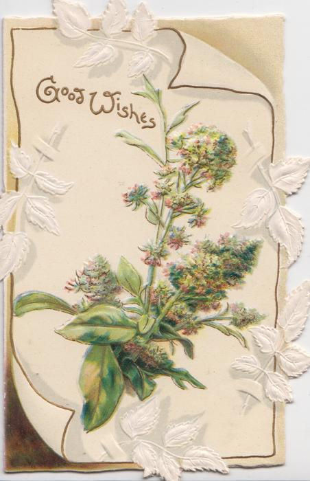 GOOD WISHES in gilt above mignonette  & stylised leaves on white placard