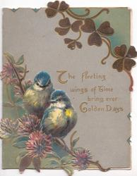 THE FLEETING WINGS OF TIME BRING EVER GOLDEN DAYS in gilt on grey background, clover leaves above & flowers below, 2 English blue-tits