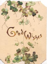 GOOD WISHES in gilt across both flaps, clover leaves above & below