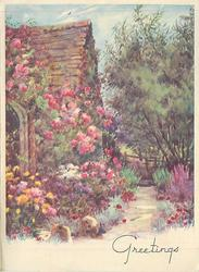 GREETINGS side view 'A' frame cottage covered in climbing pink roses, foot path lined with flowers,  tree right