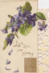 LIVE LONG AND LIVE HAPPY on white background below violets, stylised perforated ivy design right