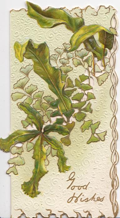 GOOD WISHES  in gilt on  white designed background below orchid cactus & ginkgo leaves