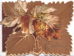 GREETINGS in gilt below brown oak leaf design & background