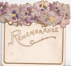 REMEMBRANCE on large white plaque below dense row of purple pansies
