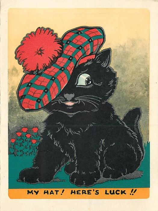 MY HAT! HERE'S LUCK!! black cat wears large Scottish tam, thistles in background left