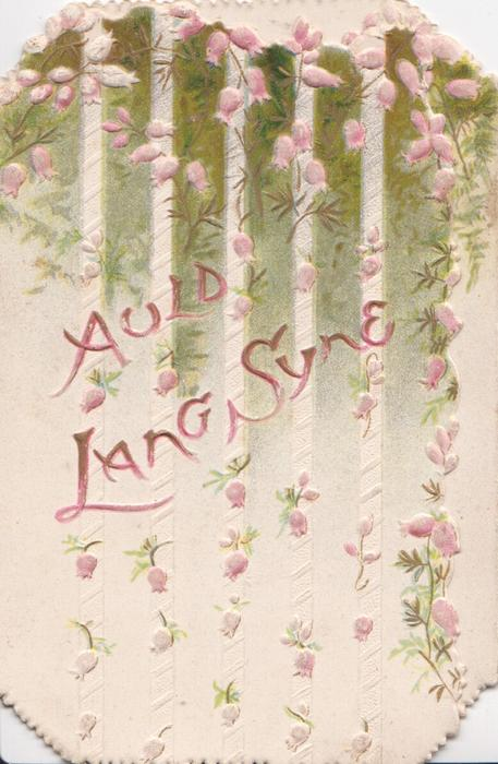 AULD LANG SYNE in pink among pink heather
