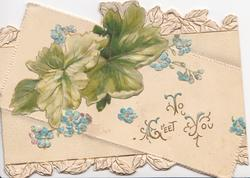 TO GREET YOU (T, G, & Y illuminated) on white background, blue forget-me-nots & leaves around