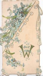 BEST WISHES( W illuminated) below right, blue forget-me-nots upper left & around with rope design
