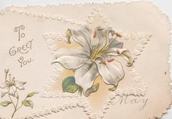 TO GREET YOU in gilt left, lily in star shaped design, stylised marginal white designs