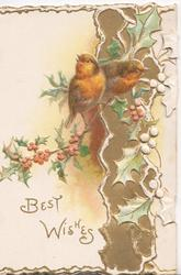 BEST WISHES in gilt below 2 English robins holly on gilt panel right & stylised on narrow right flap