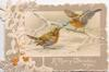 A MERRY CHRISTMAS TO YOU in white below 2 robins pulling on a christmas cracker, white holly design left